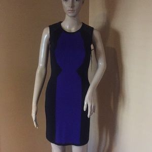 Milly Colorblock Dress with Leather Trim Size XS